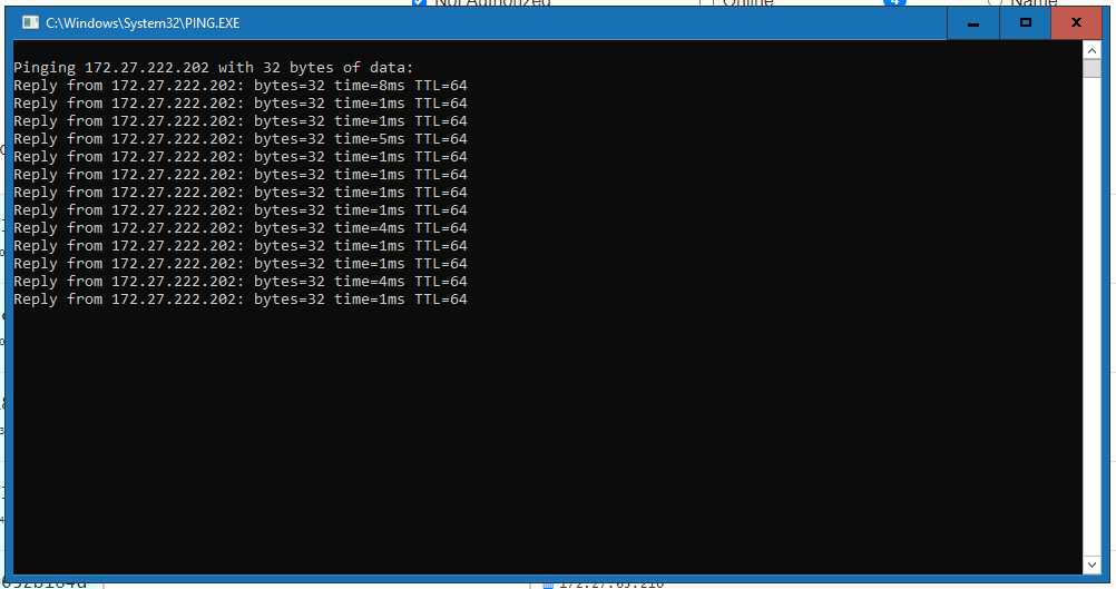 ping z win10 do rpi